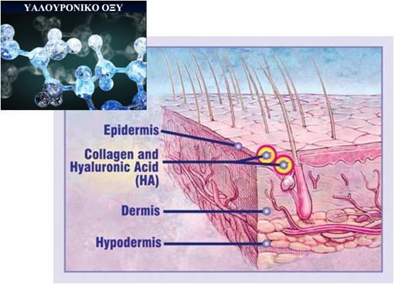 Υαλουρονικό Οξύ 3
